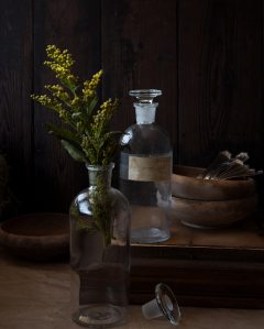 antique-apothecary-bottles-antique-bottles-antique-jars-1084586